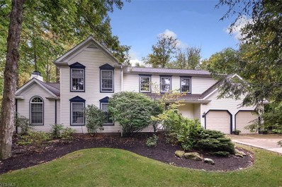 8705 Lake In The Woods Trail, Chagrin Falls, OH 44023 - #: 4141153