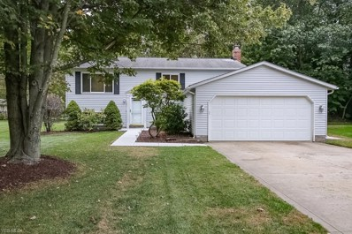 240 Morgan Drive, Painesville Township, OH 44077 - #: 4141168