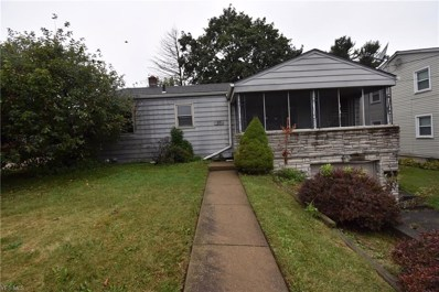 71 Iroquois Street, Struthers, OH 44471 - #: 4141177