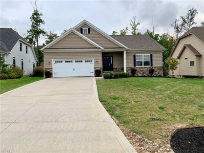 11236 Quail Hollow Drive, Concord, OH 44077 - #: 4141619