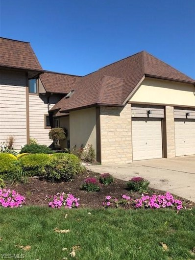 4613 Compass Rose UNIT 10, Vermilion, OH 44089 - #: 4141779