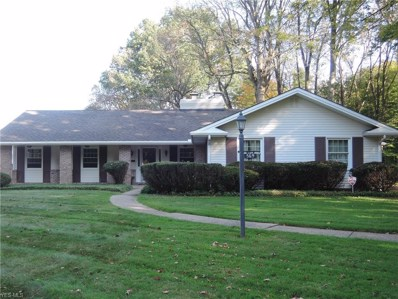 569 Northlawn, Youngstown, OH 44505 - #: 4141792