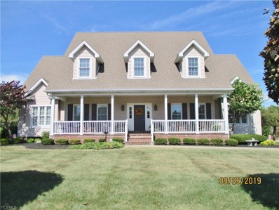 3580 Peddlers Court, Poland, OH 44514 - #: 4141883