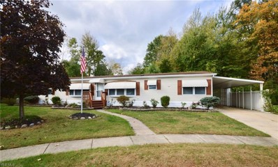 4 Matthew\'s Corner, Olmsted Township, OH 44138 - #: 4142580