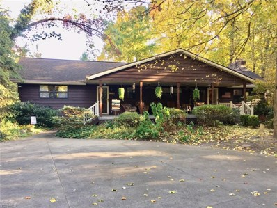 47545 Middle Ridge Road, Amherst, OH 44001 - #: 4143229