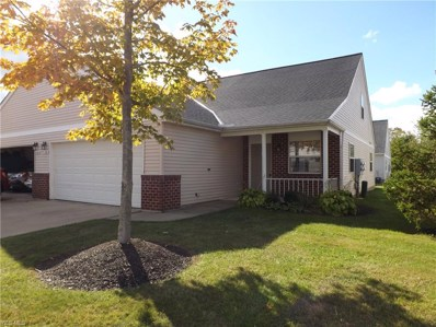 781 North Creek Drive, Painesville Township, OH 44077 - #: 4143706