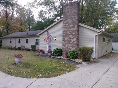 7446 Stearns Road, Olmsted Township, OH 44138 - #: 4144145