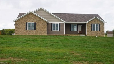915 Pamer Road, Atwater, OH 44201 - #: 4144232