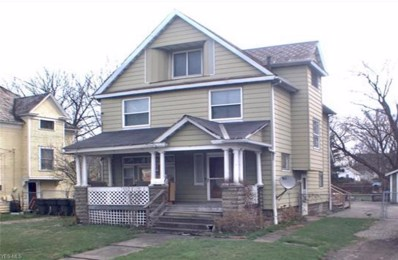 244 Parkman Road NW, Warren, OH 44485 - #: 4144318