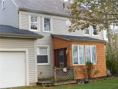 339 Kentucky Avenue, Lorain, OH 44052 - #: 4144653