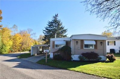 17 Maple, Olmsted Township, OH 44138 - #: 4145073