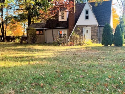 1297 S Meridian Road, Youngstown, OH 44511 - #: 4145199