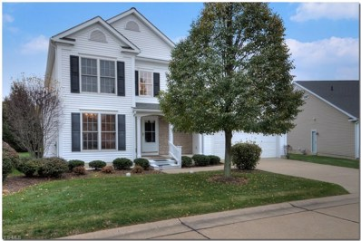 4874 Highland Place Court UNIT 27, Richmond Heights, OH 44143 - #: 4145461