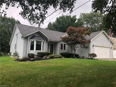 309 Avon Belden Road, Avon Lake, OH 44012 - #: 4145568