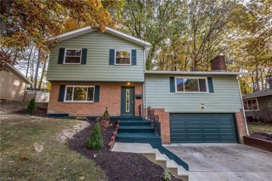 1360 Neil Evan Drive, Akron, OH 44313 - #: 4145646