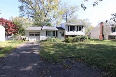 1741 Meadows Road, Madison, OH 44057 - #: 4145684