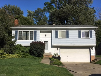457 East Overlook Drive, Eastlake, OH 44095 - #: 4145936