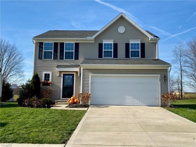 200 Chester Avenue, Wadsworth, OH 44281 - #: 4146369