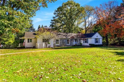 2026 State Route 45 S, Salem, OH 44460 - #: 4146432