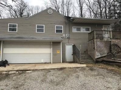 14192 View Drive, Newbury, OH 44065 - #: 4146641