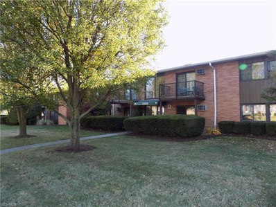 23839 David Drive UNIT 101, North Olmsted, OH 44070 - #: 4147119