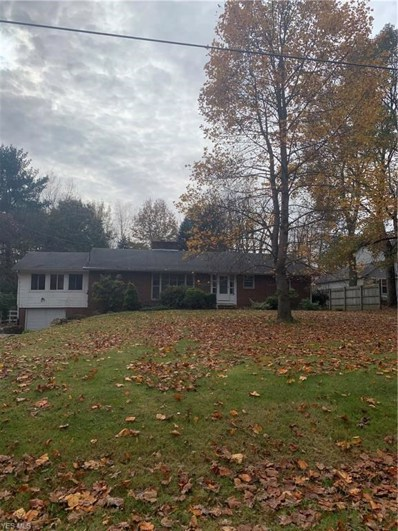1216 High View Drive, Wadsworth, OH 44281 - #: 4147159