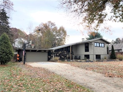 3865 Baymar Drive, Youngstown, OH 44511 - #: 4147222