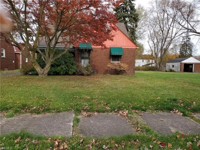 482 Catalina Avenue, Youngstown, OH 44504 - #: 4148128