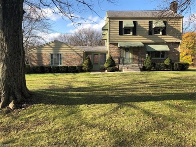 6255 Youngstown Hubbard Road, Hubbard, OH 44425 - #: 4148129