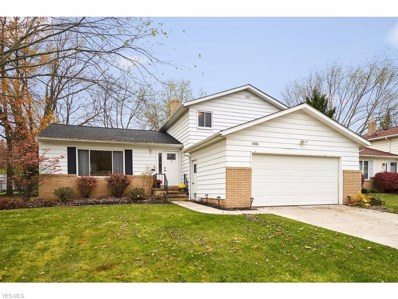 6686 Forest Glen Avenue, Solon, OH 44139 - #: 4148240