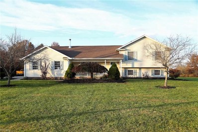 6675 Moff Road, Atwater, OH 44201 - MLS#: 4148447