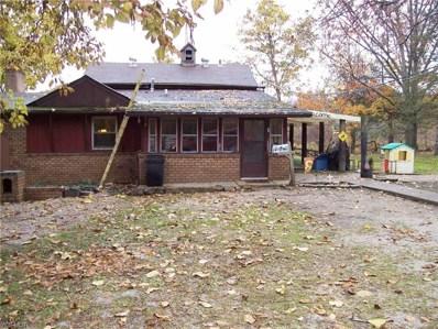 2675 River Road, Lake Milton, OH 44429 - #: 4148748