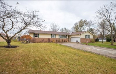 1184 Clay Court, Brunswick, OH 44212 - #: 4149020