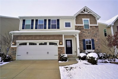 5006 Lake Forest Drive, Peninsula, OH 44264 - #: 4150221