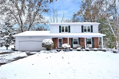 141 Chapel Lane, Canfield, OH 44406 - #: 4150445