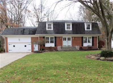 559 N Briarcliff Drive, Canfield, OH 44406 - #: 4151594