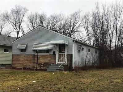 16813 Lipton Avenue, Cleveland, OH 44128 - #: 4158500