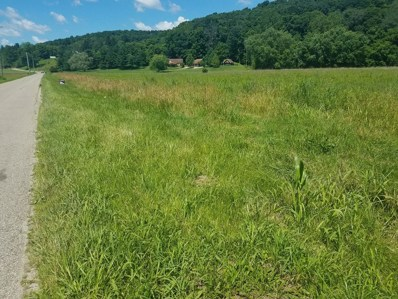 Polk Hollow, Chillicothe, OH 45601 - MLS#: 181175