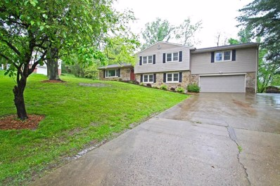 1 Applewood Drive, Chillicothe, OH 45601 - #: 181997