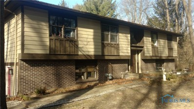 10570 Reed Road, Monclova, OH 43542 - MLS#: 6022817