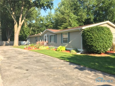 24 Connelsville Avenue, Toledo, OH 43615 - MLS#: 6027304