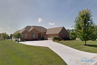 9955 N Blue Prairie Drive, Whitehouse, OH 43571 - MLS#: 6029075