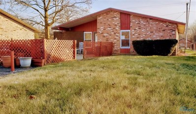 9817 Oak Place Court, Holland, OH 43528 - #: 6033909