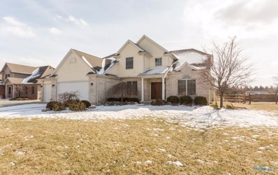 9731 Preakness Lane, Whitehouse, OH 43571 - MLS#: 6036161