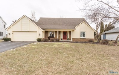 7331 Sawmill Run Drive, Holland, OH 43528 - MLS#: 6036470