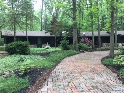 25 Indian Creek Drive, Rudolph, OH 43462 - #: 6036925