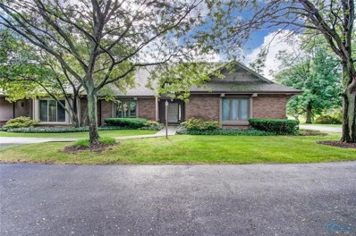 10225 Ford Road, Perrysburg, OH 43551 - #: 6036954