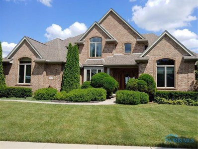 25230 River View Place, Perrysburg, OH 43551 - #: 6037207