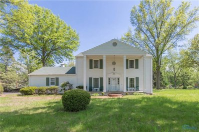 10905 Winslow Road, Whitehouse, OH 43571 - #: 6038458