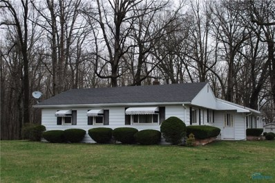 14162 County Road 10-3, Lyons, OH 43533 - #: 6038693